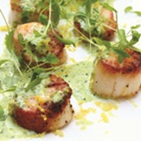 Picture of Seared Scallops
